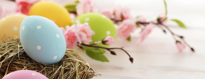 oua colorate si flori de primavara Alexandra Alexandru specialist nutritie